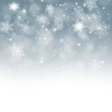 Snow Fall Royalty Free Stock Image
