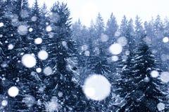 Snow fall at winter Stock Photo