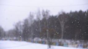 snow Fallande snöflingor med den selektiva fokusen Vinterdesignbegrepp stock video