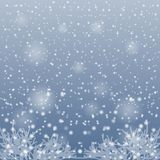 Snow falling on the branches of trees. Royalty Free Stock Images