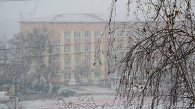Snow falling in a city with a building on winter day. Urban landscape with snow falling in a city with leafless birch tree branch in foreground and a building in stock footage