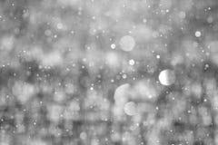 Snow Falling Close Up. Winter Saskatchewan Canada Royalty Free Stock Images
