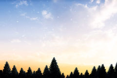 Snow falling on fir tree forest Royalty Free Stock Photography