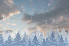 Snow falling on fir tree forest Stock Photos