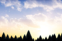 Snow falling on fir tree forest Royalty Free Stock Photos