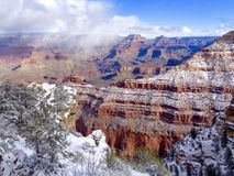 Snow falling on the Grand Canyon Stock Photography