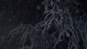 Snow Falling At Night. Large Snow Flakes Falling At Night stock footage