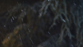 Snow Falling. At Night in the winter stock video footage