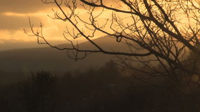 Snow falling at sunset. Video of snow falling at sunset stock video footage