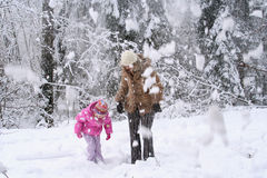 Snow falling from trees Royalty Free Stock Photo