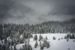 The snow falls in the mountains Royalty Free Stock Photo