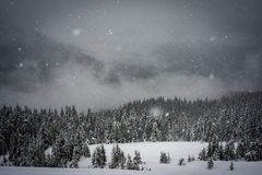 The snow falls in the mountains Stock Photography