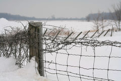Snow fence. Farm fence under snow Royalty Free Stock Photos