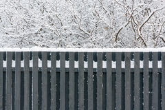 Snow on the fence. Gray wooden fence and snow-covered tree branches in winter Stock Photo