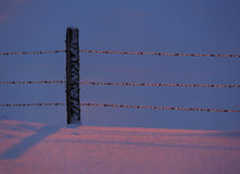 Snow Fence Icy Blue Pink Royalty Free Stock Images