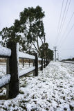 Snow on fence line Stock Image