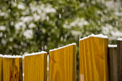 Snow on Fence Top Stock Image