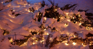 Snow on the festoon. Electric garlands under the snow Royalty Free Stock Photography