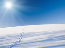 Snow field. Under blue sky  sun Royalty Free Stock Photo