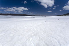 Snow Field. Snow covering a lava field in Utah Royalty Free Stock Photos
