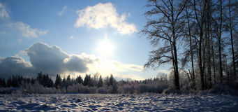 Snow in the field stock image