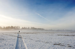 Snow field and along man Royalty Free Stock Photography