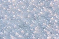 Snow field closeup in winter Royalty Free Stock Image