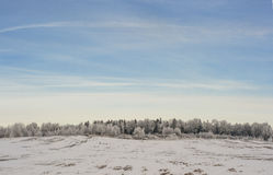 Snow field Royalty Free Stock Images