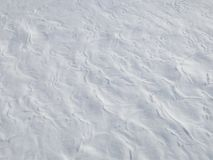 Snow field Royalty Free Stock Image