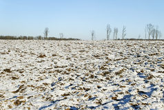 Snow on the field. Royalty Free Stock Images
