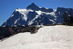 Snow fields Mount Shuksan Washington Royalty Free Stock Photos