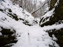 Snow Filled Gorge Illinois Royalty Free Stock Photos