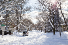 Snow filled tree lined street Stock Image