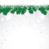 Snow Fir Twigs Bokeh. Fir twigs with snow on the bokeh background Royalty Free Stock Images