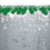 Snow Fir Twigs Concrete Stock Image