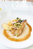 Snow Fish Steak on White Royalty Free Stock Photography