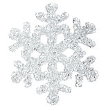Snow flake. A snow flake on a white background Stock Images