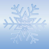 Snow-Flake Royalty Free Stock Photography