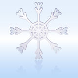 Snow-Flake Royalty Free Stock Photos
