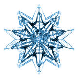 Snow Flake Stock Images
