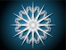 Snow flake Stock Image