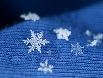 Snow flake crystals on blue knitten wool. Winter feeling newly fallen snow crystals on blue knitten wool royalty free stock photo