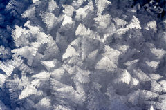 Snow flake ice crystals in winter Royalty Free Stock Image