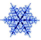 Snow flake isolated Stock Photography