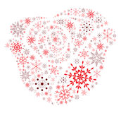 Snow Flake Rose Stock Photography