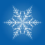 Snow Flake Single Crystal. Snow flake - single hexagonal crystal vector illustration on blue background Royalty Free Stock Images