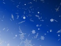 Snow flakes. 3d rendered illustration of isolated snow flakes Royalty Free Stock Photos