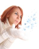 Snow flakes Royalty Free Stock Photography