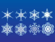Snow Flakes. Eight Intricate Snow Flake Designs vector illustration