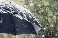 Snow flakes falling on a black umbrella royalty free stock images
